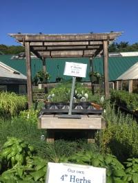 Allandale Farm herbs